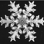 snowflake1