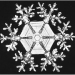 snowflake3